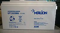 Аккумулятор мультигелевый AGM Merlion GP12650M6 12V 65AH