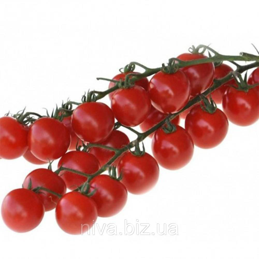 Мандат F1 семена томата дет. черри Moravoseed 500 cемян