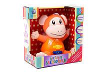 Музыкальная развивающая игрушка 805 (t23-d1007) на батарейках в коробке 19*18*11 см
