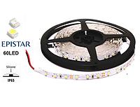 LED лента 4.8 Вт/м LedEX 60 LED/метр (6500К, влагозащищенная)