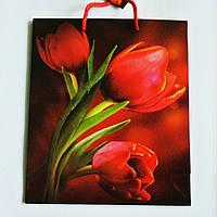 Подарочный пакет СРЕДНИЙ КВАДРАТ 21х25х8см Рисованные, красные тюльпаны