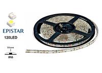 Светодиодная лента 9.6 Вт/м LedEX 120 LED/метр (3000К, влагозащищенная)