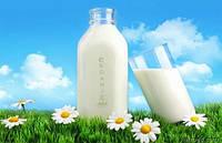 Органическое растительное молоко для вегетарианцев
