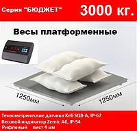 Платформенные весы 1250х1250мм, 3000 кг. Бюджет.