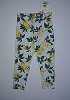 Лосины для девочек с лимонами Next