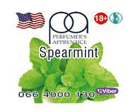 Spearmint ароматизатор TPA (Мята)