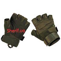 Перчатки тактические оливковые короткопалые Max Fuchs  Protect Olive 15553B