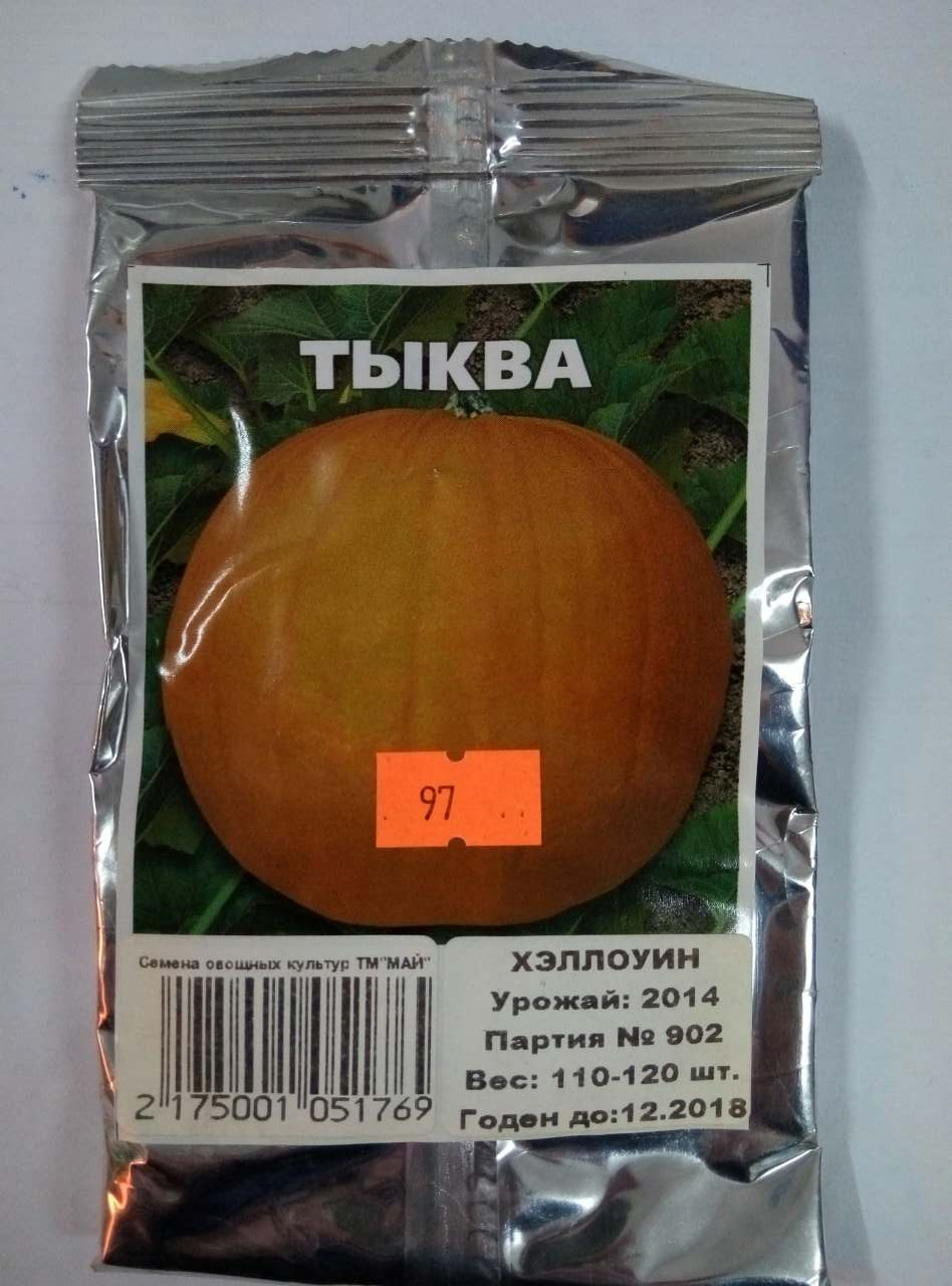 Семена Тыквы сорт Хэллоуин 110-120 шт