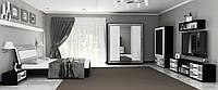 Вітальня Віола глянець білий-чорний мат, фото 1