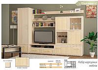 Cтенка Кайман-1 Мебель Сервис 3000х 550х2130 мм светлый ясень