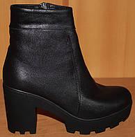 Высокие  женские ботинки весна на каблуке, женские ботинки деми от производителя модель В1667