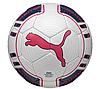 Мяч футбольный PUMA EVOPOWER 3 TOURNAMENT 082222-15