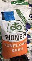 П64ЛЕ25 Пионер (P64LE25 Pioneer) 2015