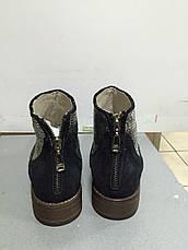 Ботинки  женские демисезонные синие замшевые Meline , фото 3