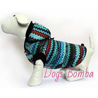 Жилетка для собак Кардиограмма бирюза DogsBomba