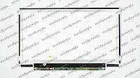Матрица N116BGE-LB1