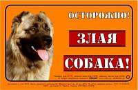 """Наклейка Collar """"ОСТОРОЖНО, ЗЛАЯ СОБАКА"""" кавказская овчарка, полноцветная"""