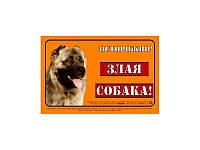 """Табличка Collar """"ОСТОРОЖНО, ЗЛАЯ СОБАКА""""  кавказская овчарка, полноцвет"""
