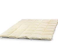 Одеяло антиаллергенное EcoSilk Carmela Зима Чехол сатин+микро 008 зимнее 172х205 см вес 1900 г.