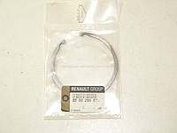 Кольцо стопорное дифференциала Renault Kangoo RENAULT (Оригинал) 8200295074