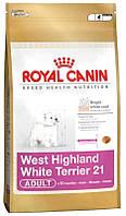 Royal Canin (Роял Канин) WESTIE HIGHLAND WHITE TERRIER ADULT (ВЕСТ ХАЙЛЕНД ВАЙТ ТЕРЬЕР ) 3кг