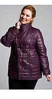 Короткая женская куртка больших размеров слива 46-54 рр