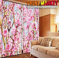 Фотошторы цветущая сакура
