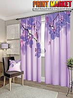Фотошторы орхидея в фиолетовых тонах