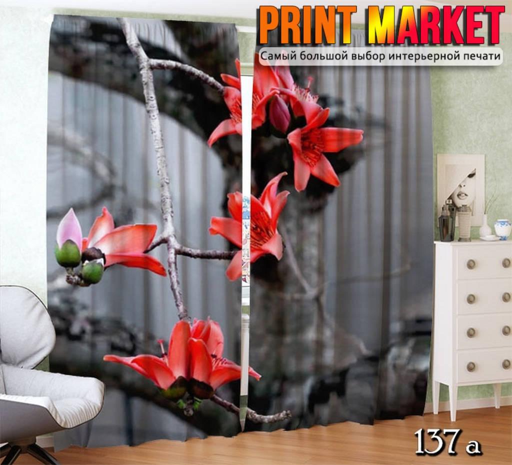 Фотошторы цветок на дереве макро