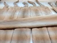 Шкурки норки,Данія,Palomino(паломіно) самець 75-78см