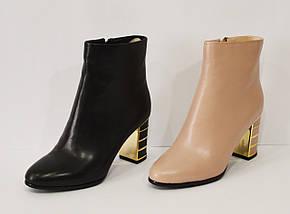 Черные женские ботинки Mellanee 96, фото 3