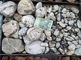 Натуральный природный камень, речная галька декоративная белая 7х10см (0223), фото 2