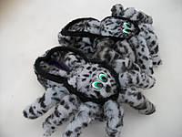 """Тапки закрытые зимние """"Бодя паук"""", фото 1"""