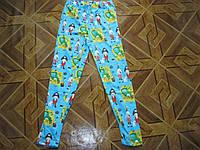 Цветные лосины для девочек 15-16 лет   Турция