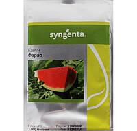 Фарао F1 (Syngenta) 1000 семян - (65-70 дней), удлиненной формы, СЛАДКИЙ! вес 15-18 (до 35) кг