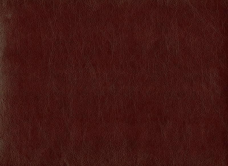Кожзам обивочный Родео 05