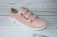 Кожаные женские кеды 0054, розовый цвет