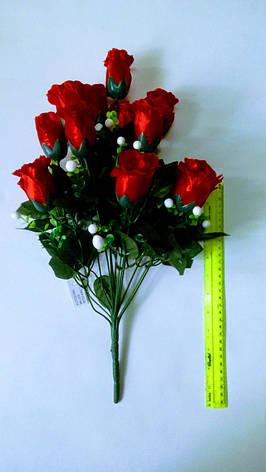 Роза, фото 2