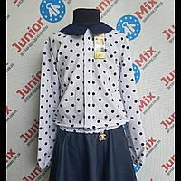 Детская нарядная блузка в крупный горох Katherine