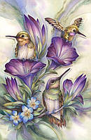 """Набор алмазной вышивки (мозаики) """"Птицы в цветах-колибри"""""""