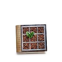Шкатулка-книга на магните с 4 отделениями Зерна кофе