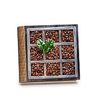 Шкатулка-книга на магните с 9 отделениями Зерна кофе
