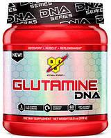 Glutamine DNA BSN, 309 грамм