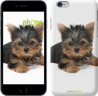 "Чехол на iPhone 6 Щенок йоркширского терьера ""931c-45"""