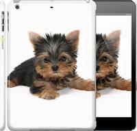 "Чехол на iPad 5 (Air) Щенок йоркширского терьера ""931c-26"""