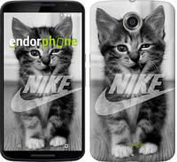 """Чехол на Motorola Nexus 6 Спортивный котик """"2715c-67"""""""
