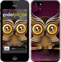 """Чехол на iPhone SE Сова на ветке """"2105c-214"""""""