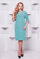 Трикотажне плаття М'ята-горох 50,52,54,56,58 р, фото 1