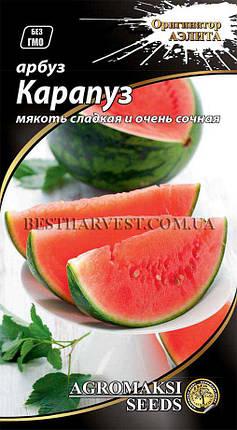 Семена арбуза «Карапуз» 2 г, фото 2