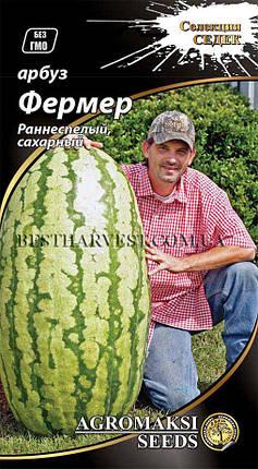 Семена арбуза «Фермер» 2 г, фото 2